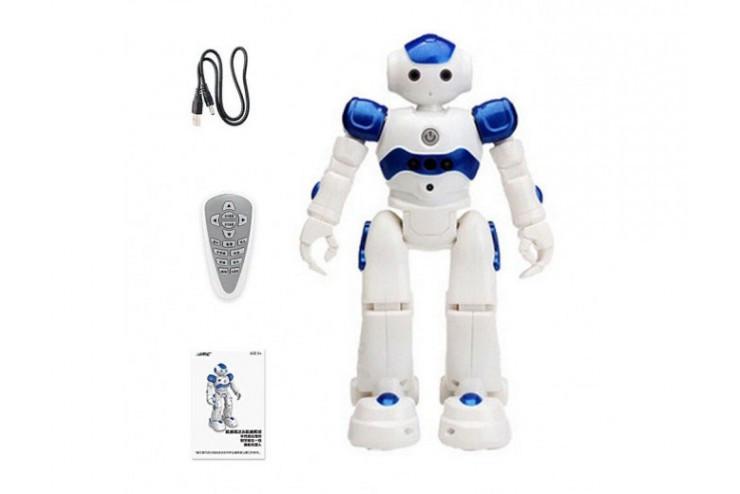 Радиоуправляемый робот Pilotage SameWin R2(917)